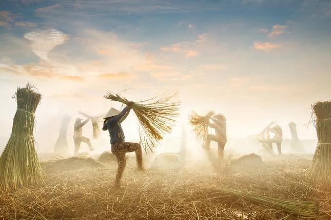 Chiêm ngưỡng 4 khoảnh khắc của Việt Nam lọt chung kết giải ảnh xuất sắc nhất năm ảnh 3