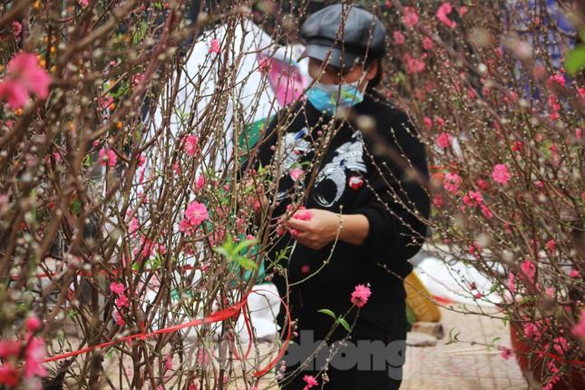 Chợ hoa dịp cận Tết và nỗi lòng người bán khi dịch COVID-19 bùng phát ảnh 22