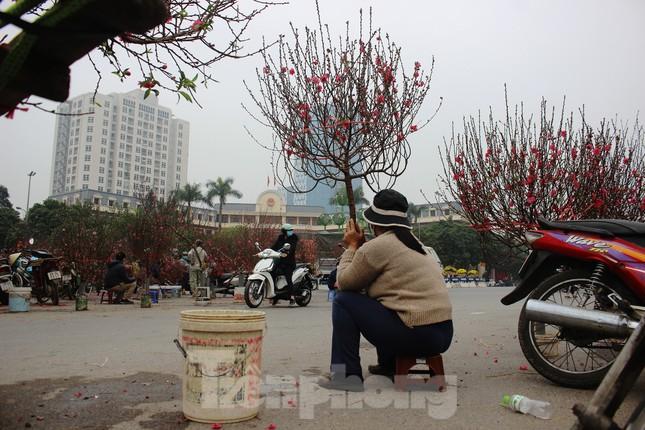 Chợ hoa dịp cận Tết và nỗi lòng người bán khi dịch COVID-19 bùng phát ảnh 21