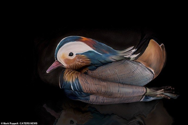 Ảnh khỏa thân biến thành động vật của nghệ sĩ body-painting gây sửng sốt ảnh 12