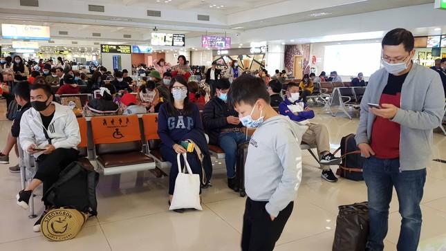 Sân bay Nội Bài phòng tránh virus corona thế nào? ảnh 1