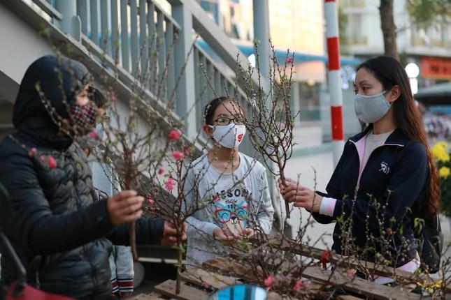 Người bán đồng loạt treo biển giảm giá, 'xả' cây và hoa ngày cuối năm ảnh 4
