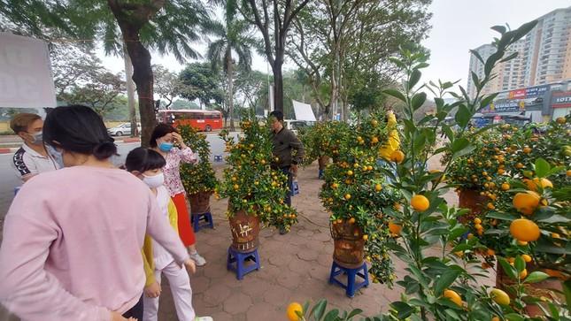 Người bán đồng loạt treo biển giảm giá, 'xả' cây và hoa ngày cuối năm ảnh 7
