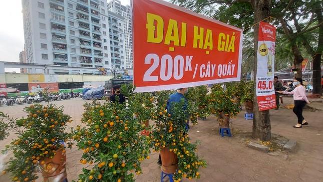 Người bán đồng loạt treo biển giảm giá, 'xả' cây và hoa ngày cuối năm ảnh 9