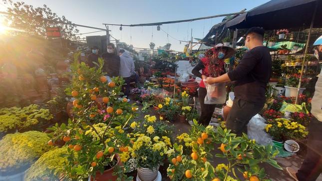 Người bán đồng loạt treo biển giảm giá, 'xả' cây và hoa ngày cuối năm ảnh 11