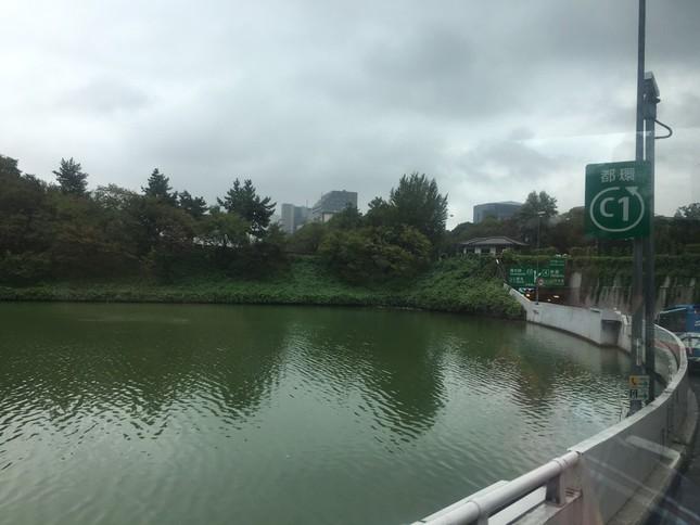 Ghi nhận Tiền Phong: Sau 2 ngày đổ bộ, bão Habigis không còn 'dấu tích' ở Tokyo ảnh 2
