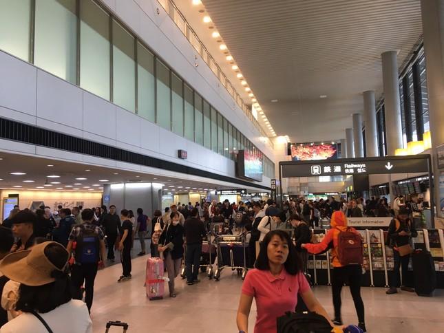 Ghi nhận Tiền Phong: Sau 2 ngày đổ bộ, bão Habigis không còn 'dấu tích' ở Tokyo ảnh 4