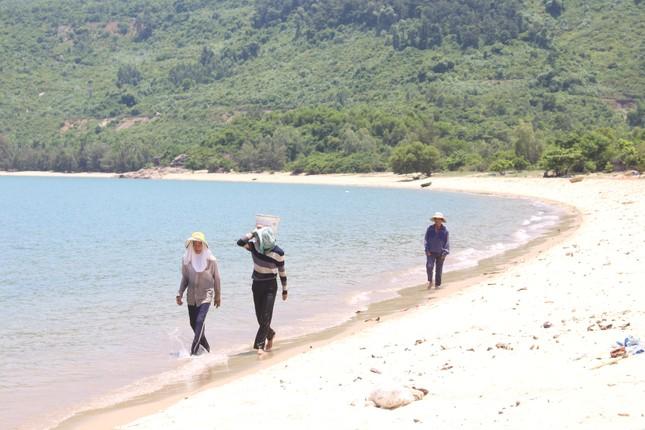 Đà Nẵng: Khởi động dự án Khu du lịch làng Vân vào ngày kỷ niệm Giải phóng thành phố ảnh 1