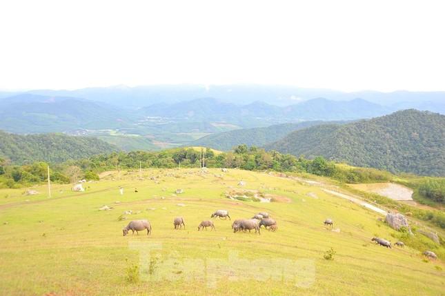 Mê mẩn vẻ đẹp thảo nguyên xanh mướt với những khối đá kỳ lạ ở Bắc Giang ảnh 1