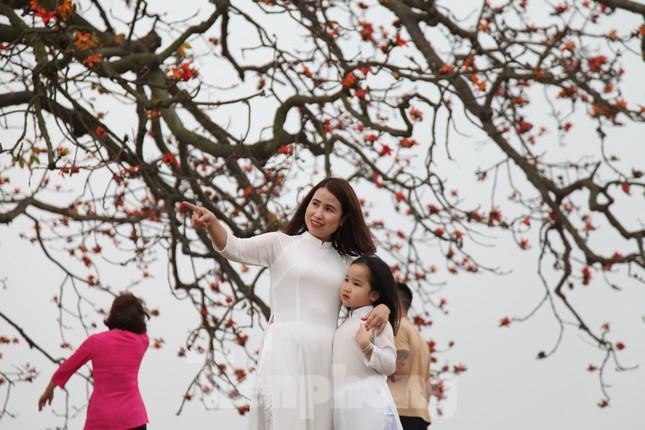 Dòng người tấp nập đổ về chiêm ngưỡng cây gạo cổ thụ ở Bắc Giang ảnh 7