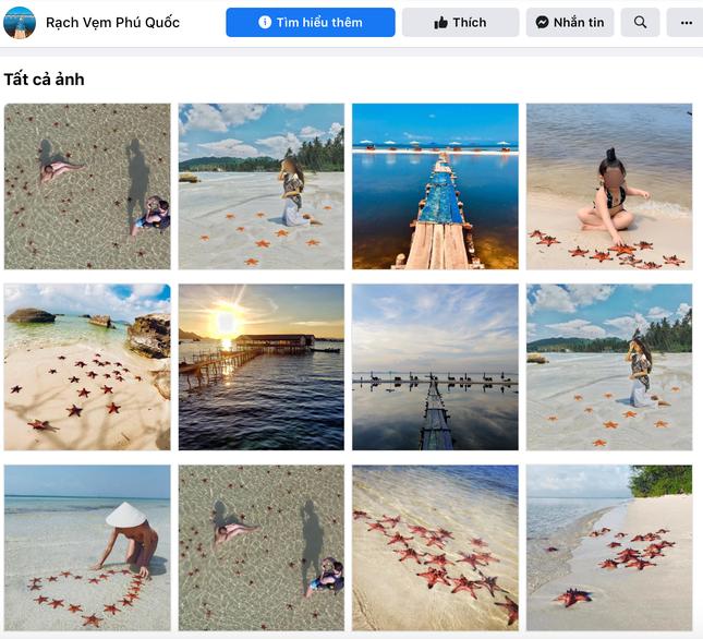 """Sao biển ở Phú Quốc chết khô la liệt trên bờ biển do nhiều du khách bắt để """"check-in""""? ảnh 1"""