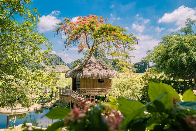 Năm du lịch Quốc gia 2021: Hang Múa (Ninh Bình) trở thành địa điểm được giới trẻ yêu thích ảnh 2