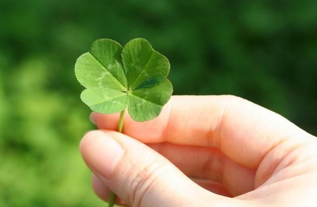 May mắn là một khả năng có thể học hỏi, và đây là cách giúp bạn nắm bắt may mắn của mình ảnh 1