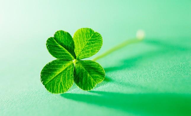 May mắn là một khả năng có thể học hỏi, và đây là cách giúp bạn nắm bắt may mắn của mình ảnh 3
