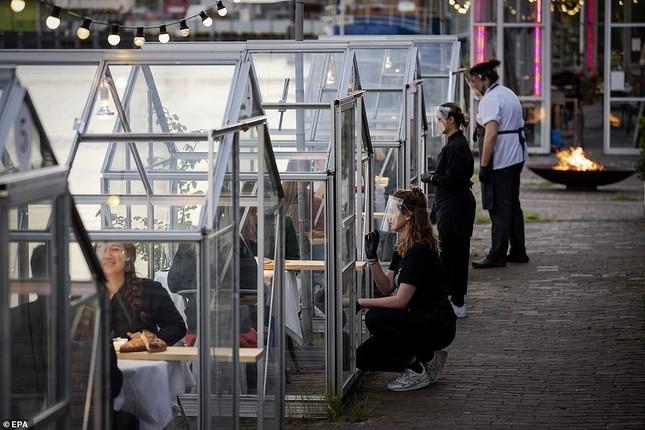 Hẹn hò thời COVID-19: Đến nhà hàng và ăn tối trong lồng kính mini lãng mạn như cổ tích ảnh 3