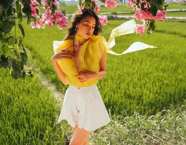 Hoa hậu Tiểu Vy khoe nhan sắc rực rỡ trong bộ ảnh mới chụp tại quê nhà Hội An ảnh 11