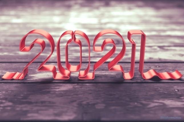 Kết thúc một năm nhiều biến động, điều gì chờ đợi 12 cung Hoàng đạo trong 2021? ảnh 4