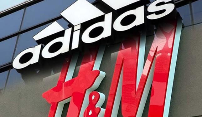 Lý do H&M và nhiều thương hiệu lớn bị tẩy chay ở Trung Quốc, các đại sứ đòi ngừng hợp tác? ảnh 1