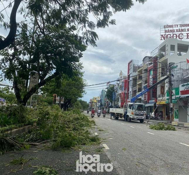 """Xót xa """"cây Mắt Biếc"""" trơ trụi sau bão số 5, khắp thành phố Huế ngổn ngang cây đổ ảnh 17"""