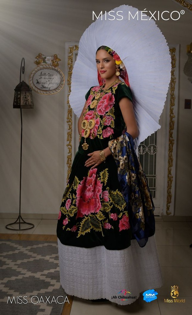 Choáng ngợp trước trang phục truyền thống lộng lẫy của các thí sinh Hoa hậu Mexico 2020 ảnh 12