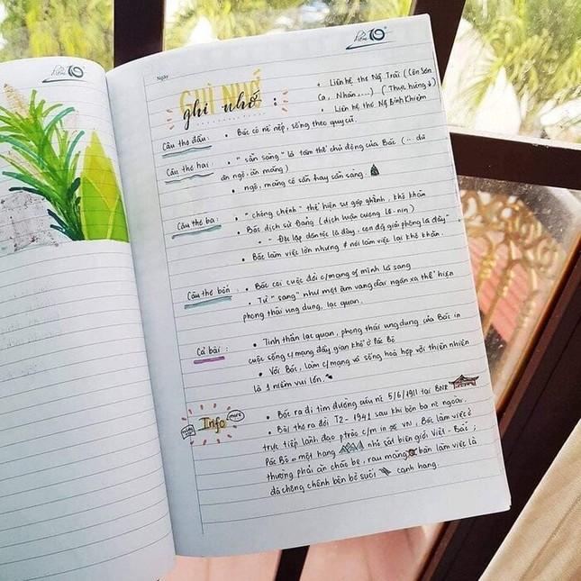 Cuốn vở Ngữ văn được trang trí đầy màu sắc, nhìn vào là muốn học bài ngay! ảnh 4