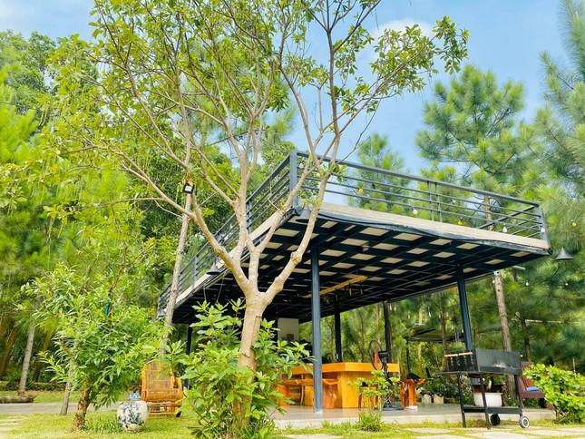 """Tha hồ """"sống ảo"""" ở villa nhà kính giữa rừng thông cách trung tâm Hà Nội 1 tiếng chạy xe! ảnh 9"""