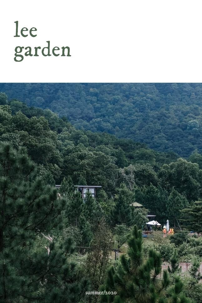 """Tha hồ """"sống ảo"""" ở villa nhà kính giữa rừng thông cách trung tâm Hà Nội 1 tiếng chạy xe! ảnh 1"""