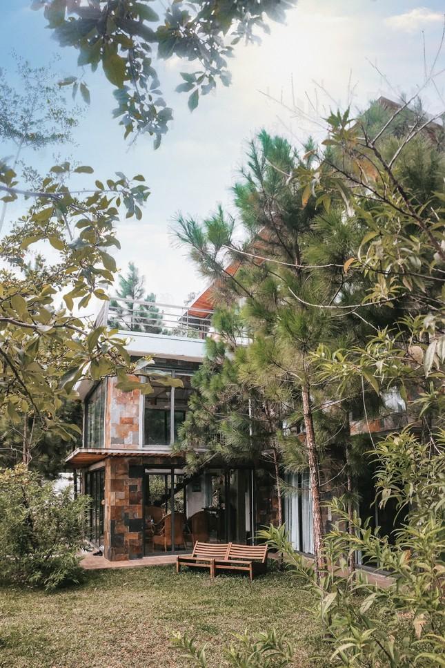 """Tha hồ """"sống ảo"""" ở villa nhà kính giữa rừng thông cách trung tâm Hà Nội 1 tiếng chạy xe! ảnh 4"""