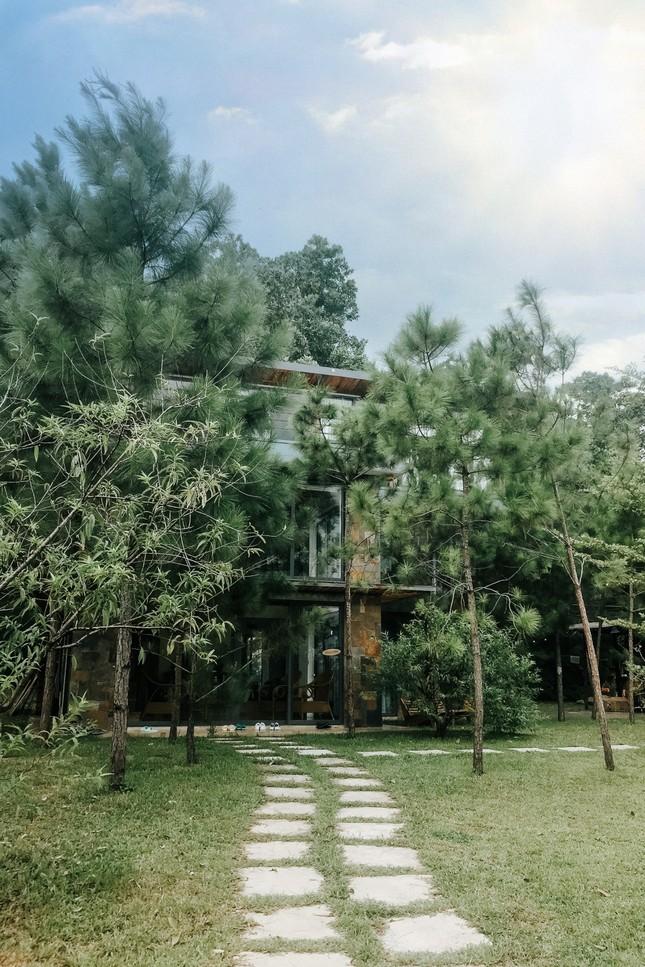 """Tha hồ """"sống ảo"""" ở villa nhà kính giữa rừng thông cách trung tâm Hà Nội 1 tiếng chạy xe! ảnh 3"""