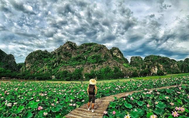 """Ngỡ ngàng hồ sen nở rộ giữa Thu ở Hang Múa (Ninh Bình), giới trẻ tha hồ chụp ảnh """"sống ảo"""" ảnh 7"""