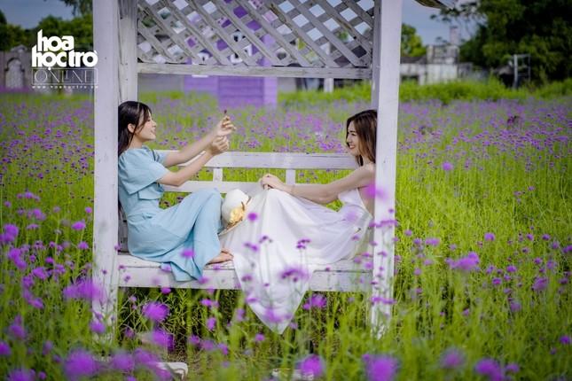 Giới trẻ Hà Nội rủ nhau check-in ở cánh đồng hoa oải hương rộng hàng chục nghìn mét vuông ảnh 7