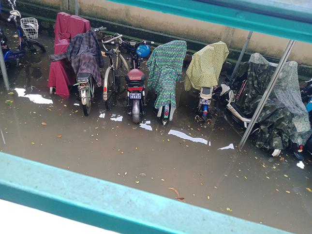 Teen miền Trung: Ngồi ôn bài mà nước ngập tới đầu gối chưa biết khi nào mới trở lại trường ảnh 2