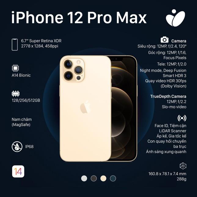 Phiên bản iPhone 12 Pro, iPhone 12 Pro Max: Màn hình lớn viền mỏng, có thêm 2 màu sắc mới ảnh 3