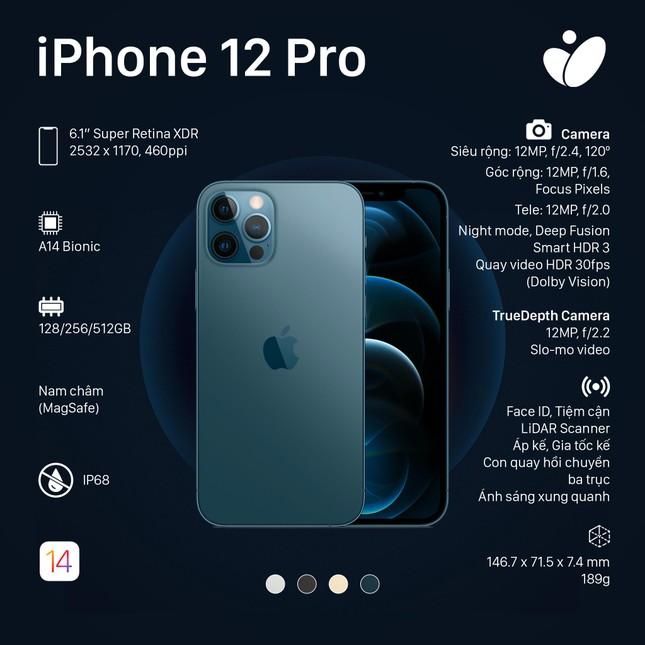 Phiên bản iPhone 12 Pro, iPhone 12 Pro Max: Màn hình lớn viền mỏng, có thêm 2 màu sắc mới ảnh 2