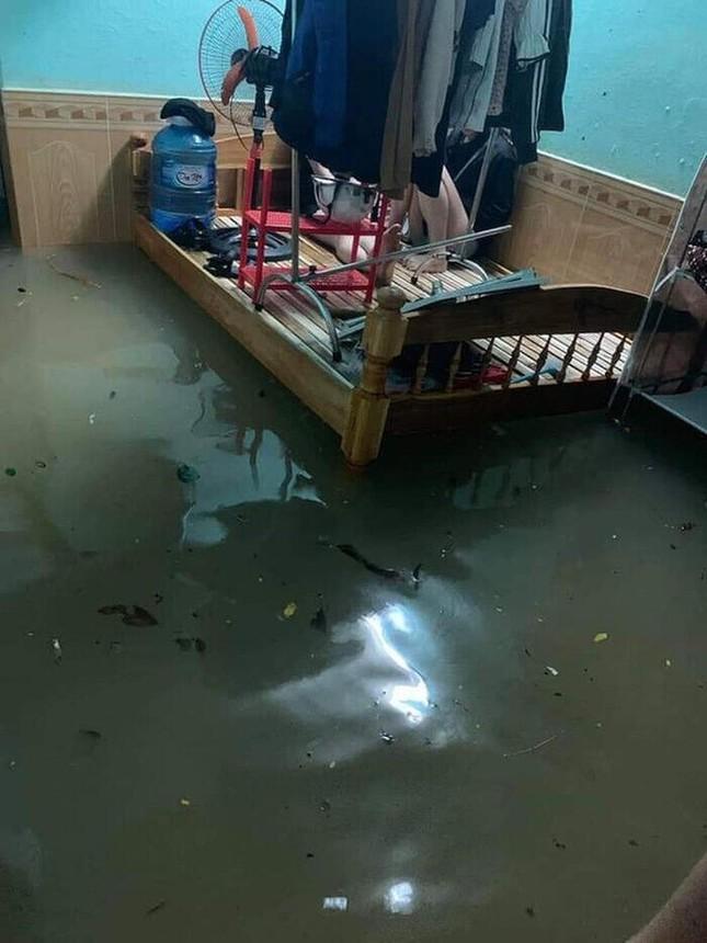 """Sinh viên miền Trung xoay sở mùa mưa lũ: Gió quật bay cả mái nhà, """"câu cá"""" trong phòng trọ ảnh 4"""