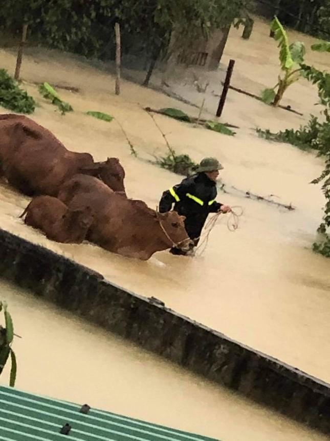 Cảnh tượng xót xa: Nhiều nơi tại Nghệ An ngập sâu trong nước lũ, khu vực biển bị sập bờ kè ảnh 4
