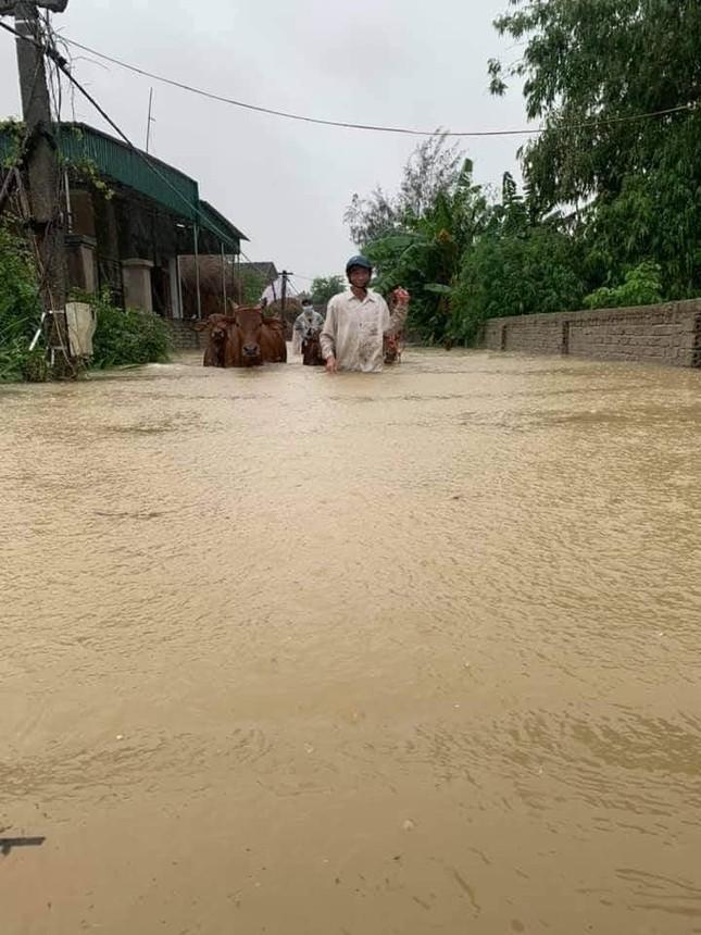 Cảnh tượng xót xa: Nhiều nơi tại Nghệ An ngập sâu trong nước lũ, khu vực biển bị sập bờ kè ảnh 2