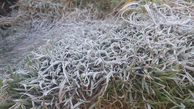 Nhiệt độ trên đỉnh Fansipan xuống mức -3 độ C, dân tình rủ nhau đi ngắm băng tuyết ảnh 3