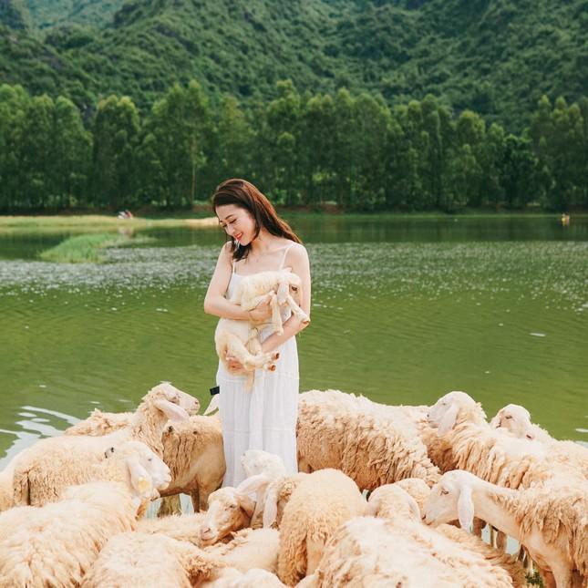"""Hang Múa, đồng cừu Gia Viễn (Ninh Bình) lọt top điểm """"hot"""" dịp Tết Dương lịch 2021 ảnh 10"""