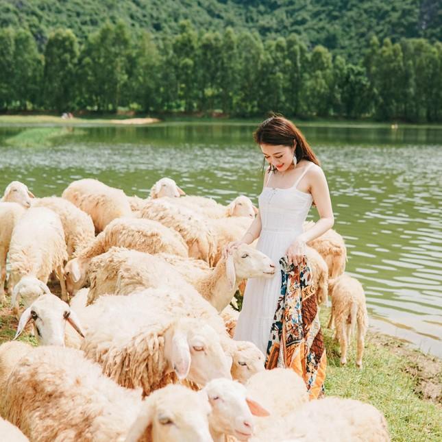 """Hang Múa, đồng cừu Gia Viễn (Ninh Bình) lọt top điểm """"hot"""" dịp Tết Dương lịch 2021 ảnh 12"""