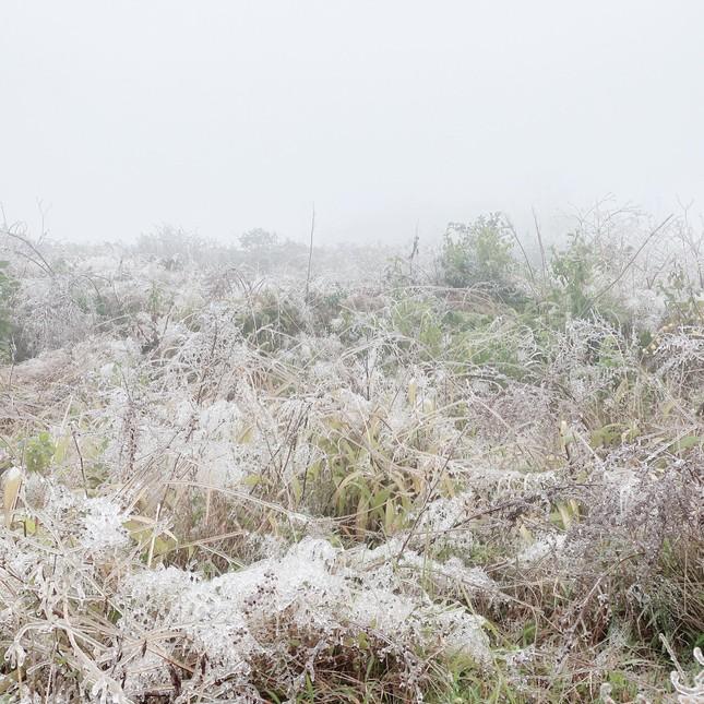 Giới trẻ đua nhau check-in tuyết rơi lãng mạn ở Sa Pa: Đừng quên lưu ý quan trọng này! ảnh 6