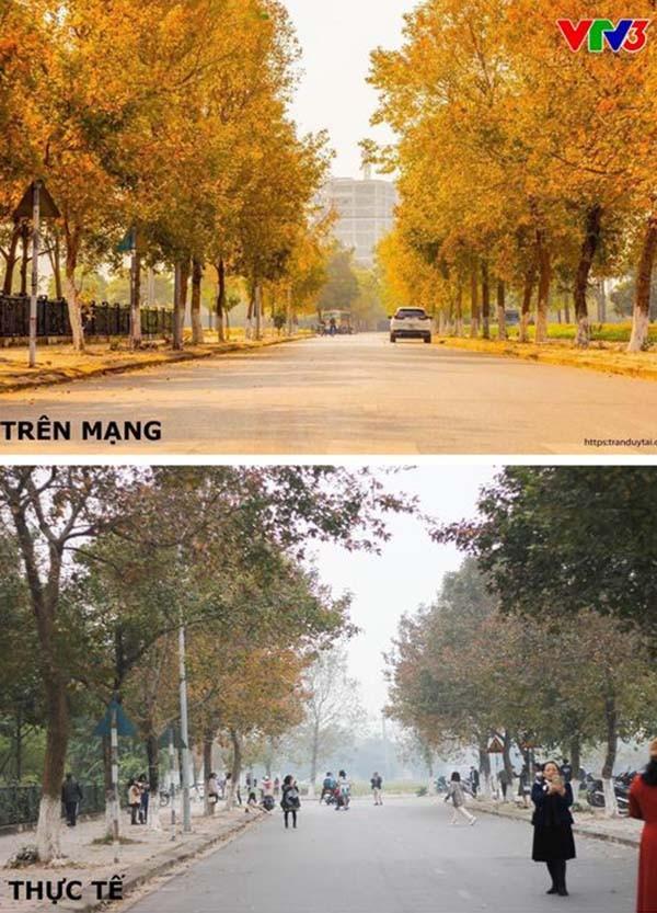 """Con đường lá phong đỏ được mệnh danh """"Seoul giữa lòng Hà Nội"""": Ảnh thực tế khác xa! ảnh 5"""