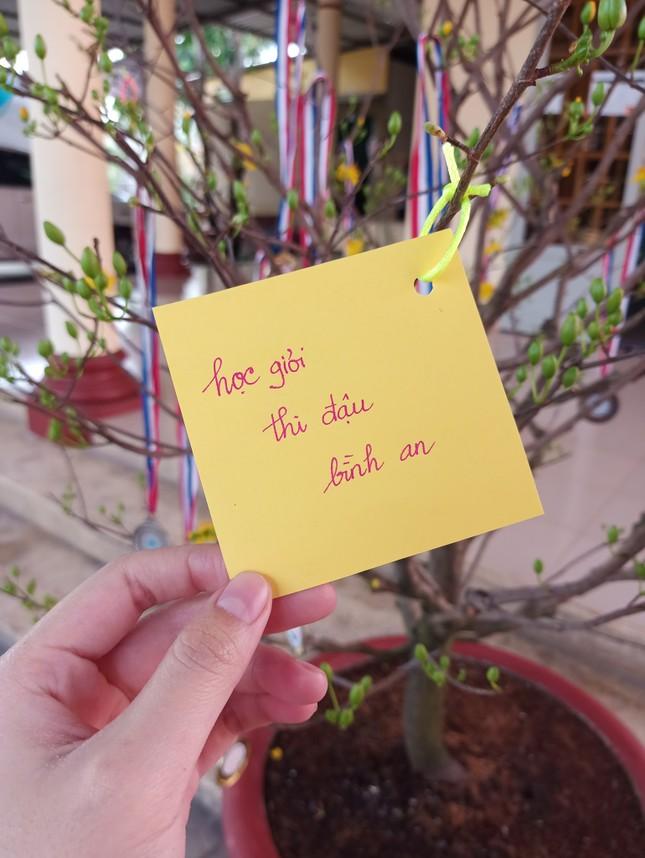 """Trào lưu """"hot"""" của teen Việt trong những ngày Tết: Khoe cây cảnh treo đầy bằng khen, huy chương ảnh 6"""