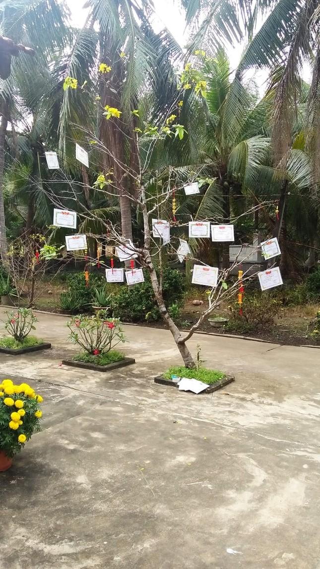 """Trào lưu """"hot"""" của teen Việt trong những ngày Tết: Khoe cây cảnh treo đầy bằng khen, huy chương ảnh 3"""