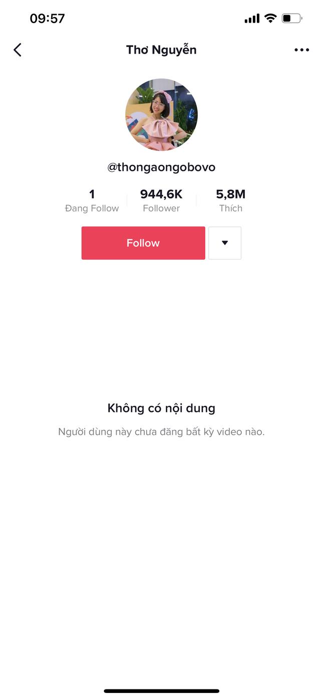 Ẩn hết video TikTok, khóc lóc chán trên clip, Thơ Nguyễn lại cử đại diện lên phân bua gì? ảnh 1