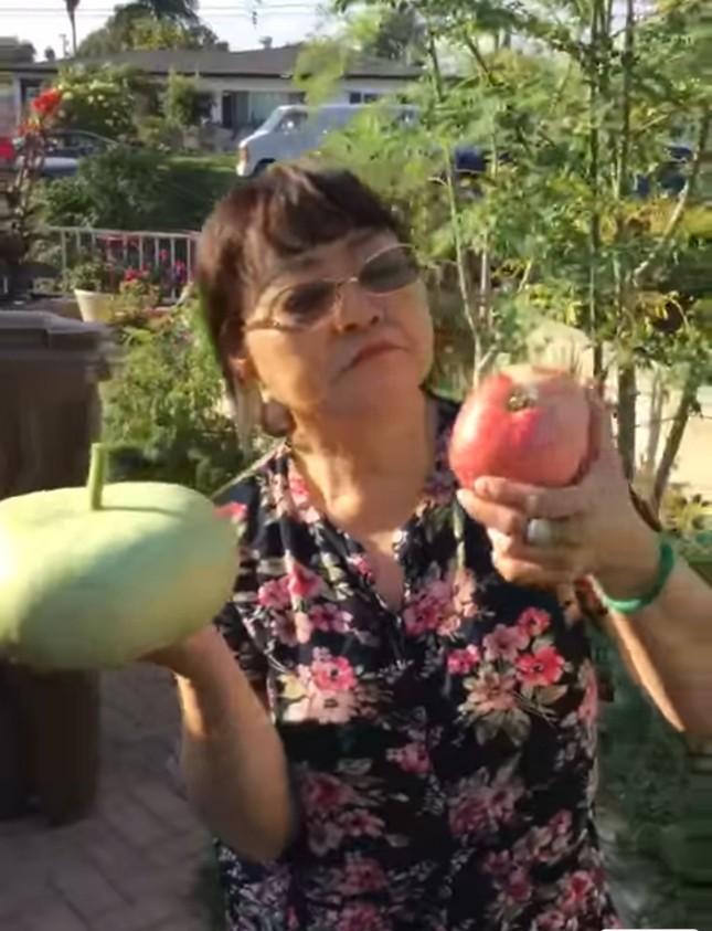 Vườn cây trái tươi tốt ở Mỹ của danh ca Hương Lan ảnh 6