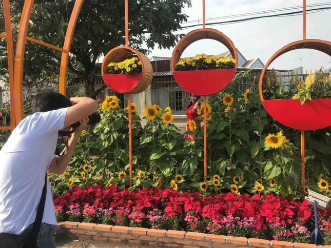 Những đường hoa không thể bỏ qua dịp Tết Nguyên đán ở Sài Gòn ảnh 11