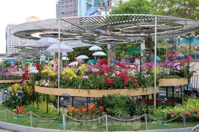 Cận cảnh đường hoa Nguyễn Huệ Tết Nguyên đán 2020 trước giờ khai hội ảnh 5