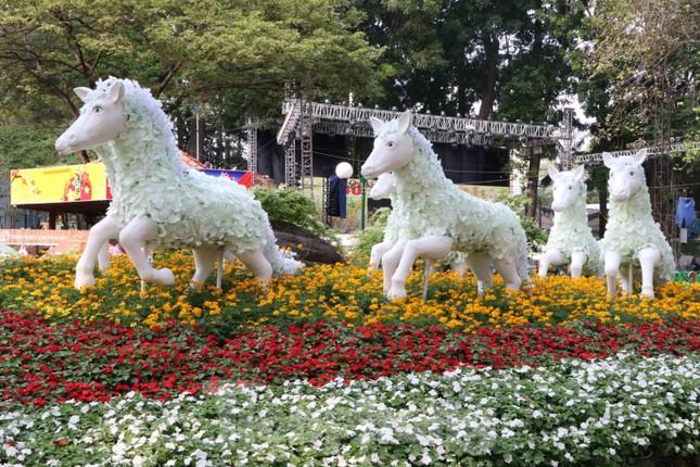 Dân Sài Gòn kéo nhau vào hội hoa xuân chụp hình 'tự sướng' ngày cận tết ảnh 3