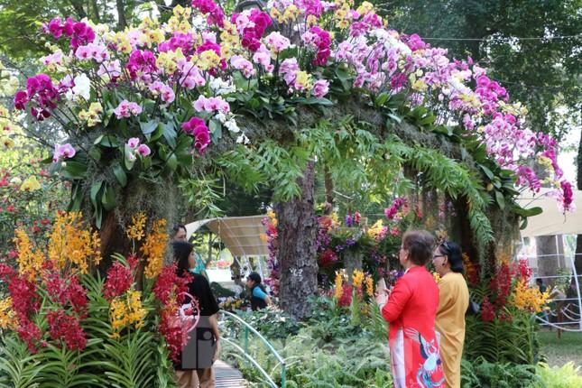 Dân Sài Gòn kéo nhau vào hội hoa xuân chụp hình 'tự sướng' ngày cận tết ảnh 5